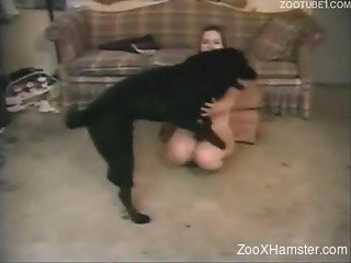 Girl got down on all fours to make dog fuck her