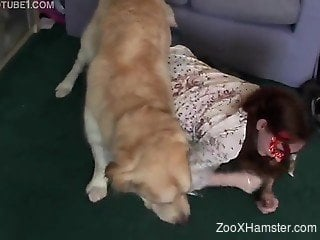Dog helps master sexually satisfy girlfriend
