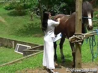 Horse appraiser takes pause for quick fuck with stallion