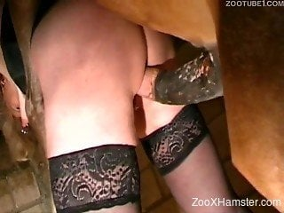 MILF in black stockings fucked from behind with stallion�...