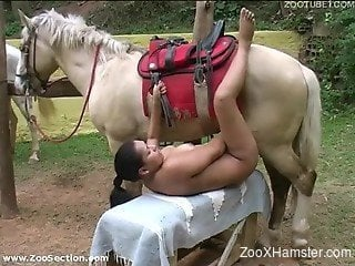 Latina teen takes clothes off and is ready for sex with stallion