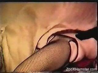Insane home videos with women fucking animals