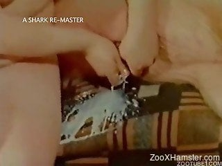 Asian-looking brunette sucking that cock with passion