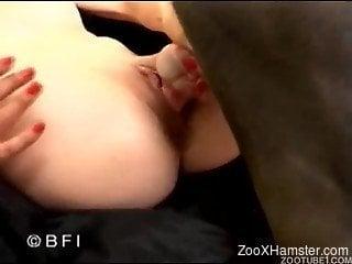 Passionate babe and black doggy are enjoying bestiality XXX