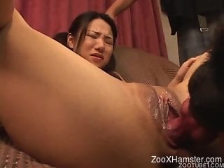 Japanese cutie forced to suck and spread legs for dog's...