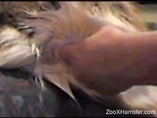 Relentless dude fingering and fucking his horny animal