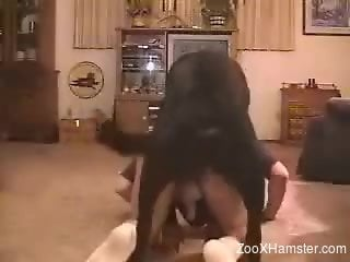 Horny dude sure likes his dog fucking him in the ass