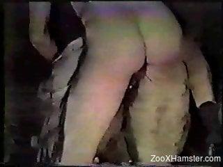 Naked man fucks horse until the last drop