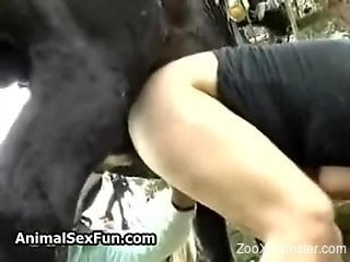 Redheaded mommy getting gaped by a hung stallion