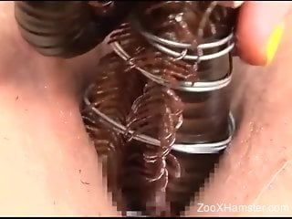 Crazy hot close-up porn video with an animal-infested cunt
