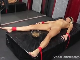 Wormy tits tortured with a vacuum device in a lezdom scene