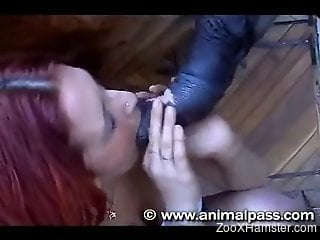 Redheaded zoophile chick is addicted to horse cock