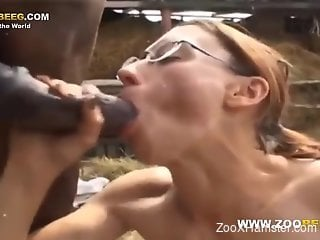 Nerdy babe in cute specs gets fucked by a horse
