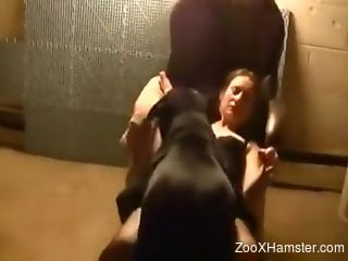 Stockings-clad chick gets licked and then fucked hard