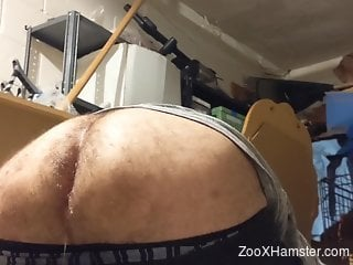 Hairy booty zoophile sneakily fucking a kinky beast