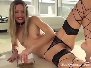Full scat porn in zoophilia tryout by a hot blonde
