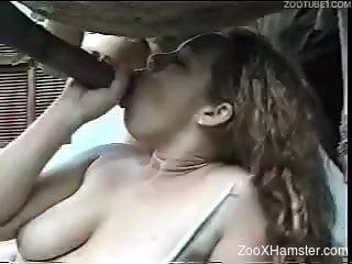 Latino beauties sharing the same large animal penis