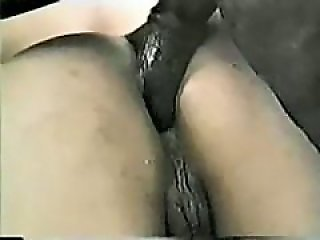 Horse Porn Tube