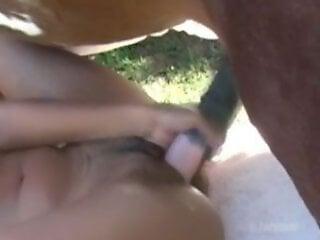 Animal Porn Videos