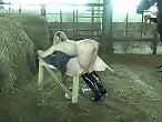 Bestiality Farm Sex
